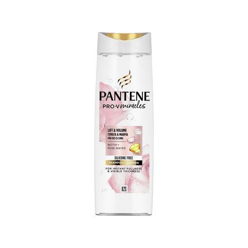 PANTENE ROSE WATER LIFT&VOL 300ml